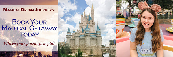 Hillary Kerry Travel Agent and Magic Kingdom Cinderella Castle