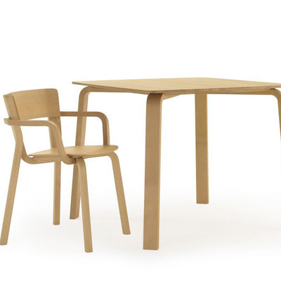 Parawood Table