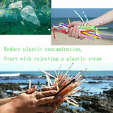 Collapsible Straw Reusable Stainless Steel Straws