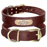Genuine Leather Personalized ID Dog Collars Free Engrave Nameplate