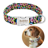 Personalized Nylon Print Dog Cat Puppy Tag Collar Engrave Nameplate ID
