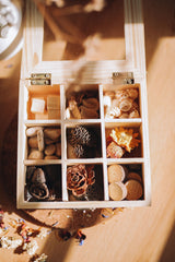 ❀ Timber keepsakes box with nature loose parts | nine compartments