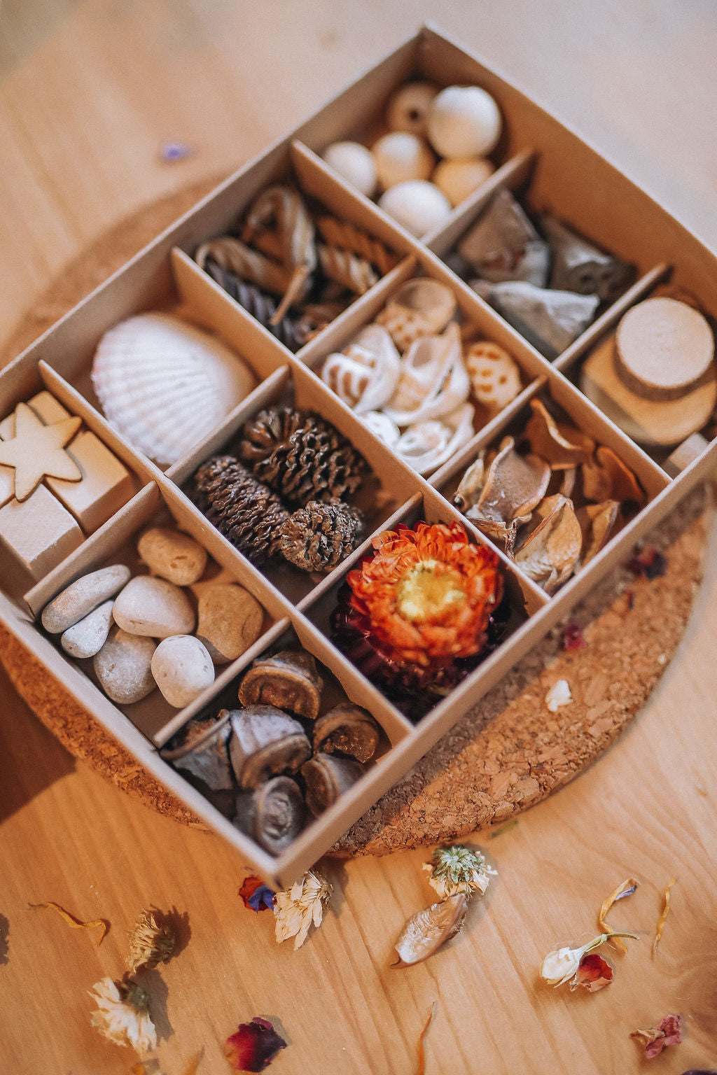 ❁ loose parts play introduction kit | 12 compartment **NEW PRICE!