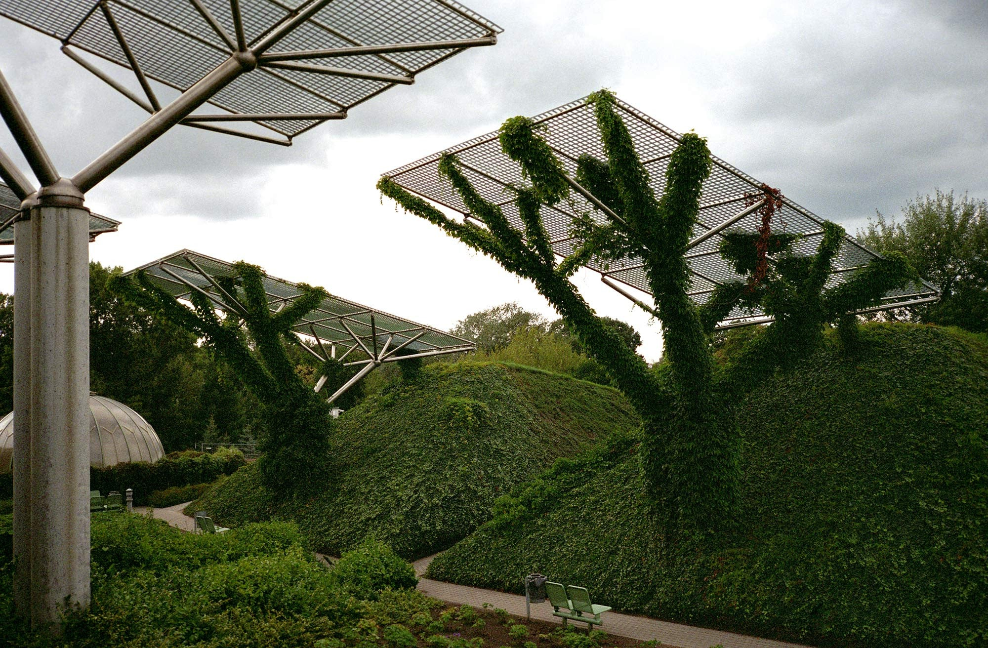 The University of Warsaw Roof Garden