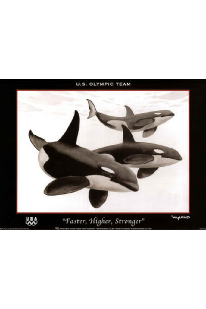 Orca Faster Higher Stronger