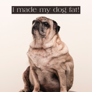 I made my dog fat