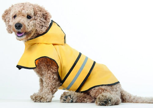 Rainy Days Slicker-Apparel-The Classic Pooch