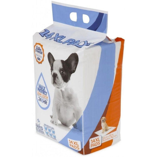 Precision Pet Little Stinker Housetraining Dog Pee Pads-potty time-The Classic Pooch