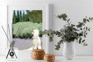 French Country Rose Garden Reed Diffuser