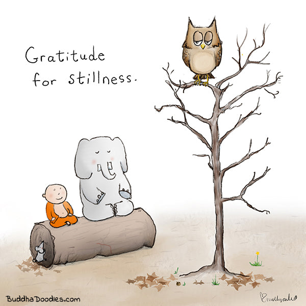 Gratitude for Stillness