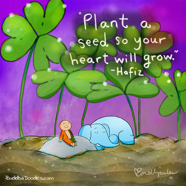 Plant a Seed so Your Heart will Grow