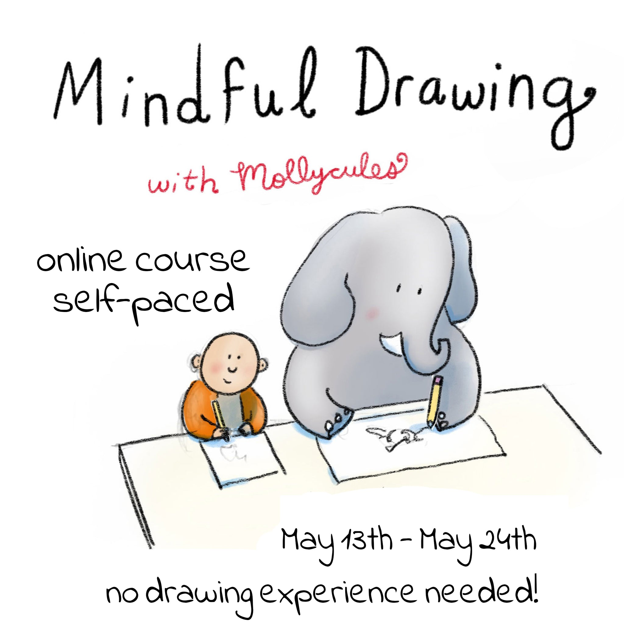 Mindful Drawing Online Course (May 13th-May 24th)