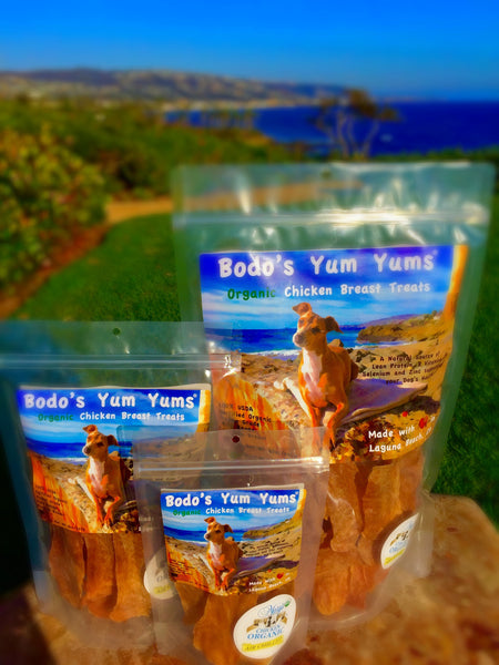 Bodo's Yum Yums Organic Chicken Breast Treats