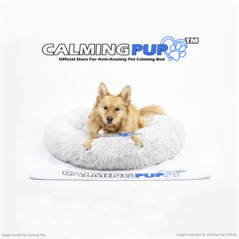 Calming Dog Bed By Calming Pup Official - The Best Pet Bed For Dogs