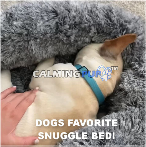 Calming Dog Bed Snuggle Bed