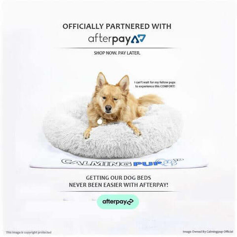 Calming dog bed usa official 1-3 day delivery! (30% off today) - made in usa fast shipping