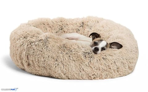 dog calming bed calming dog bed cat calming bed calming cat bed comfiest pet bed anti anxiety