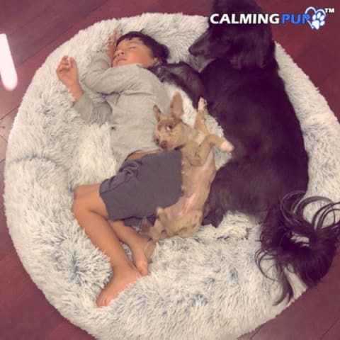 calming dog bed anti anxiety calming [et bed for cats, dogs - anti anxiety free shipping