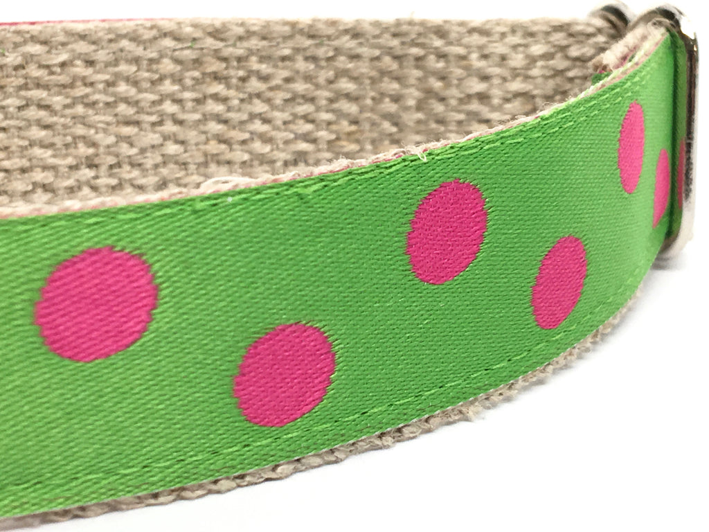 Dotty Green Apple/ Pink 1""