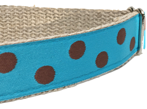 Dotty Turquoise/ Brown 1""