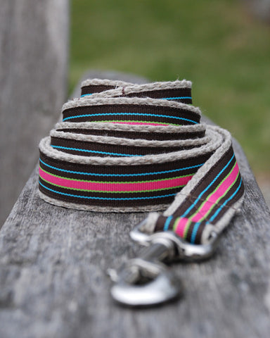Compo  Stripe Leash