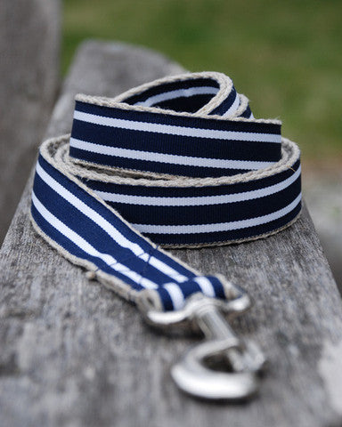 Winslow Stripe Leash