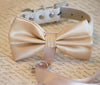 Champagne wedding collar dog bow tie ring bearer event i do marry me