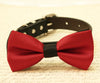 Red dog bow tie wedding collar christmas gift
