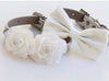 White dog collars