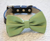 green dog bow tie, dog collar