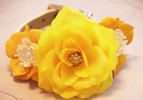 Yellow Floral wedding dog collar, high quality Leather collar, Yellow wedding accessory, Garden of Yellow Flowers