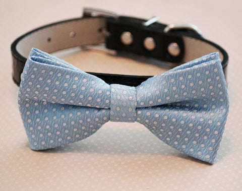 Blue Dog bow tie attached collar, Pet Wedding, Some thing blue, Wedding idea