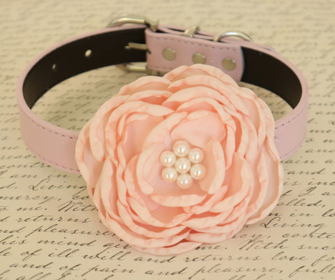 Blush Flower dog collar