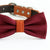 Burgundy bow tie collar, handmade Puppy bow tie, XS to XXL collar and bow adjustable dog of honor ring bearer, Burgundy orange bow tie