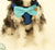 Dog Harness, Bow attached to dog harness, Blue bow with a charm, Live, Love, Laugh, Dog Harness and Bow tie, Dog lovers, Dog birthday gift - LA Dog Store  - 2