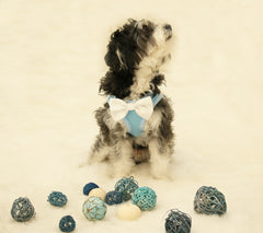 Dog Harness with bow tie, Dog birhtday gift