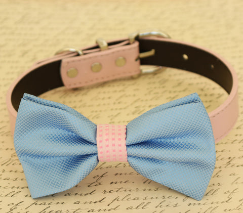 Blue and pink dog bow tie attached to collar, Pet wedding, dog birthday