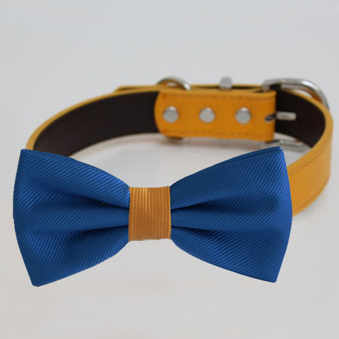 Royal blue Orange bow tie collar, handmade Puppy bow tie, XS to XXL collar and bow adjustable dog of honor ring bearer, Royal blue bow tie