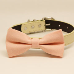 Blush dog bow tie collar, Dog collar, Pet wedding accessory, Blush wedding, Puppy Gift, Birthday,Leather collar, Dog lover