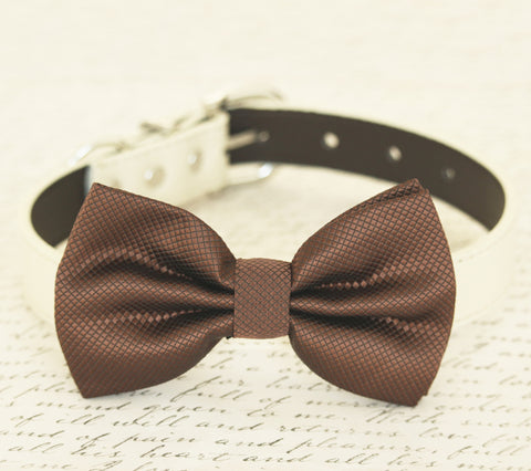 Brown dog bow tie collar, bow attached to dog collar, dog birthday gift, dog collar, dog lovers, brown wedding accessory