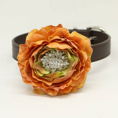 Dusty orange flower dog collar, Burnt Orange leather dog collar