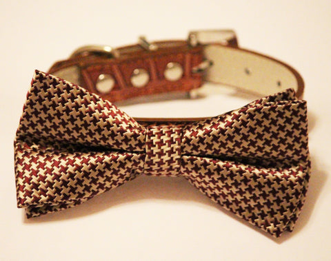 Gold Brown Bow tie with dog collar, Chic and Elegant, Wedding Dog Accessory , Wedding dog collar