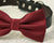 Burgundy Dog Bow Tie Collar- Leather collar -Pet accessory- Marsala