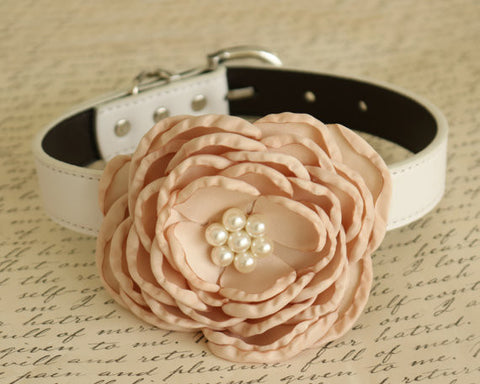 Champagne Floral Wedding dog collar, birthday, flower with Pearls, Handmade , Wedding dog collar