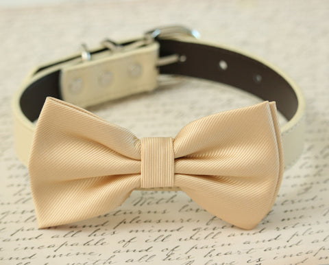 Champagne Dog Bow tie Collar - Dog Leather collar - Handmade- Pet Wedding accessory