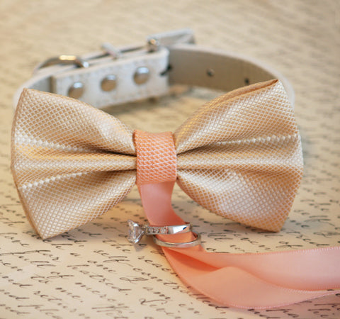 Champagne and Peach wedding, Dog ring bearer, Dog Bow Tie , Wedding dog collar