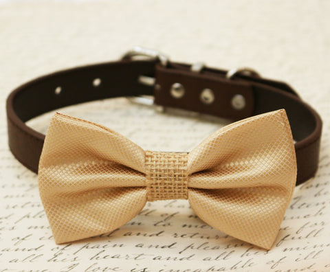 Champagne Dog Bow Tie attached to collar, Country Rustic wedding, Burlap
