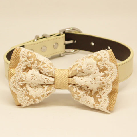 Champagne Lace Dog Bow Tie, Pet Wedding collar, handmade