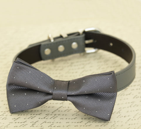 Charcoal Dog Bow Tie collar, bow attached to dog collar