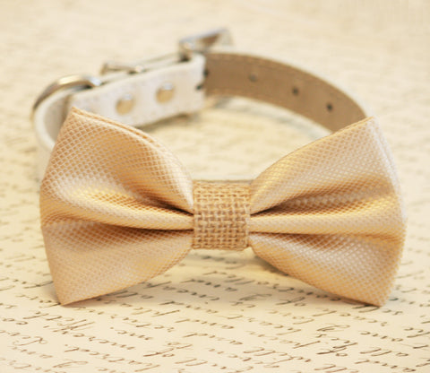 Champagne and burlap Dog Bow Tie collar, Burlap Wedding , Wedding dog collar